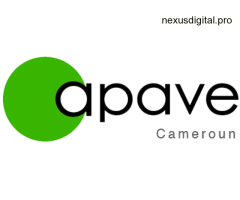 Comptable Consolidation Groupe H/F via Apave Cameroun